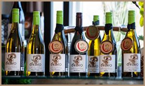 Ovino Wines