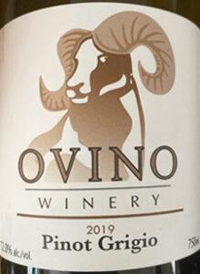 Pinot Grigio, Ovino Winery, Salmon Arm, BC