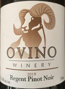 Regent Pinot Noir, Ovino Wines, Salmon Arm, Okanagan