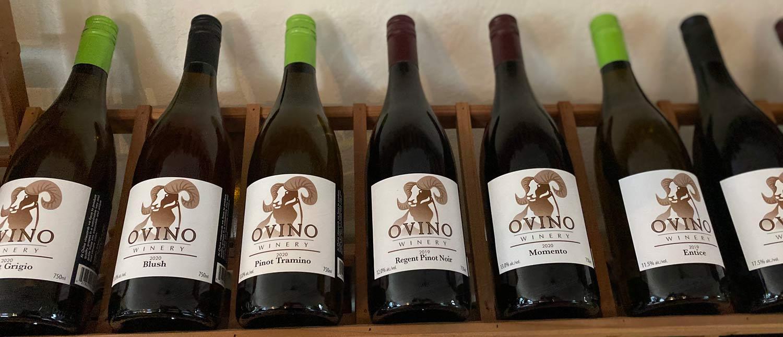 Ovino Winery Wines, Salmon Arm, BC